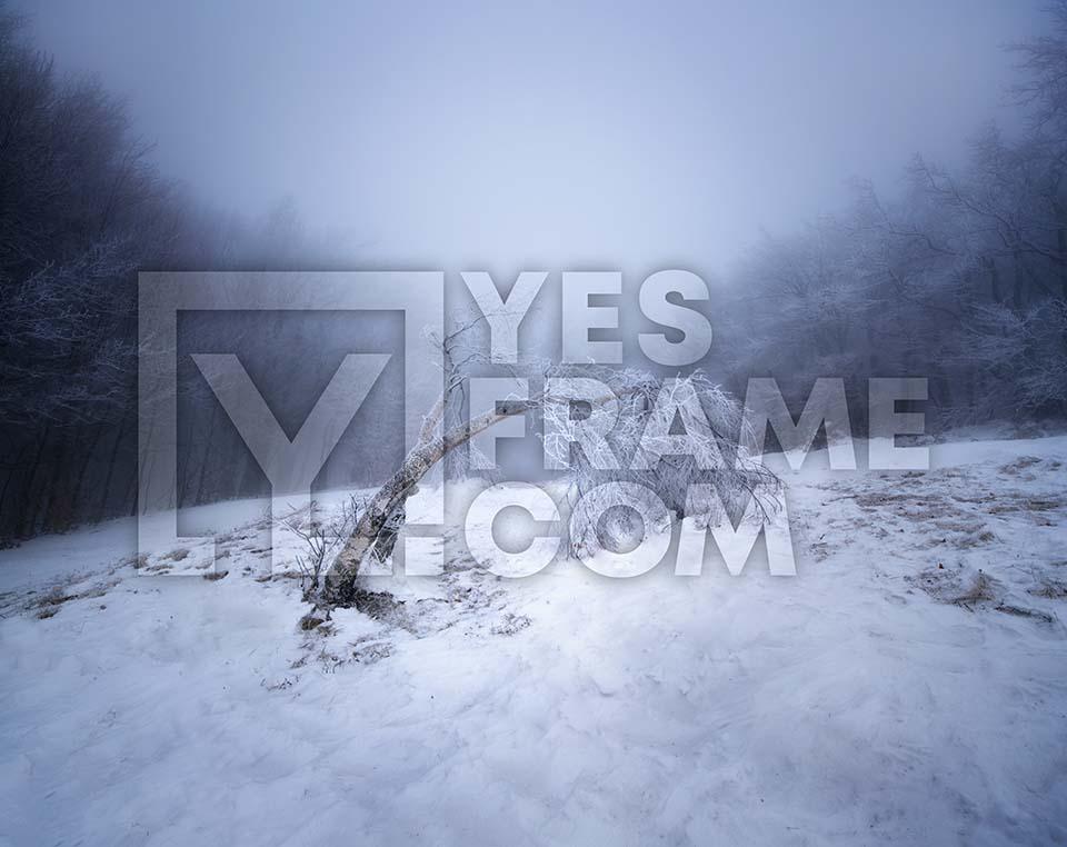 Stara Planina Balkan Mountains Thumbnail PHRS037