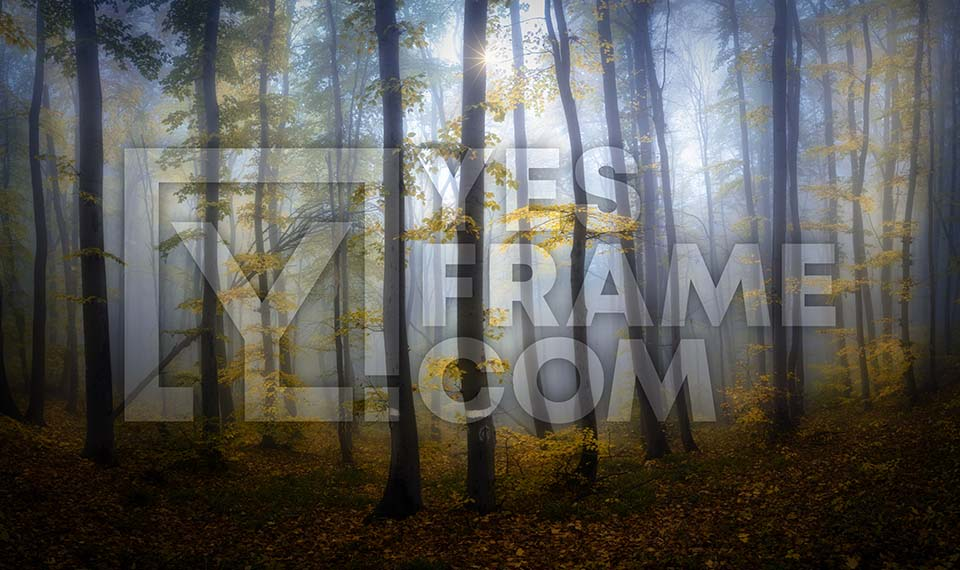 Vitosha Mountain Thumbnail PHRS017